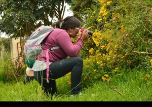 plantilla-fotos-web7